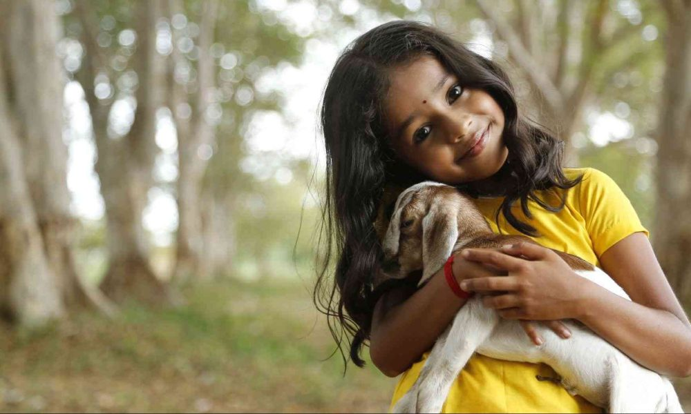 Baby Krithika Wiki, Biography, Age, Serials, Images
